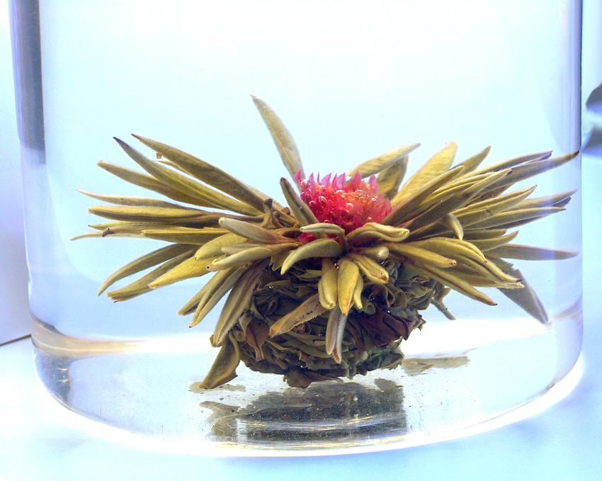 Tea Art - Kvetoucí čínský čaj - 'Tisíc červených květů' 2 ks