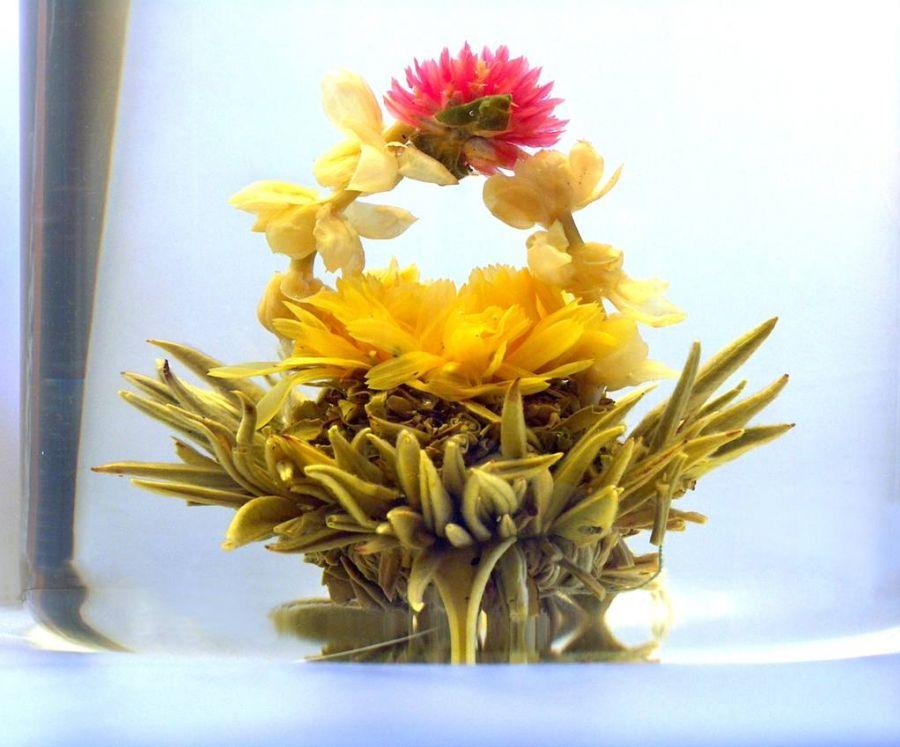 Tea Art - Kvetoucí čínský čaj - 'Květinový koš ve vodě' 2 ks