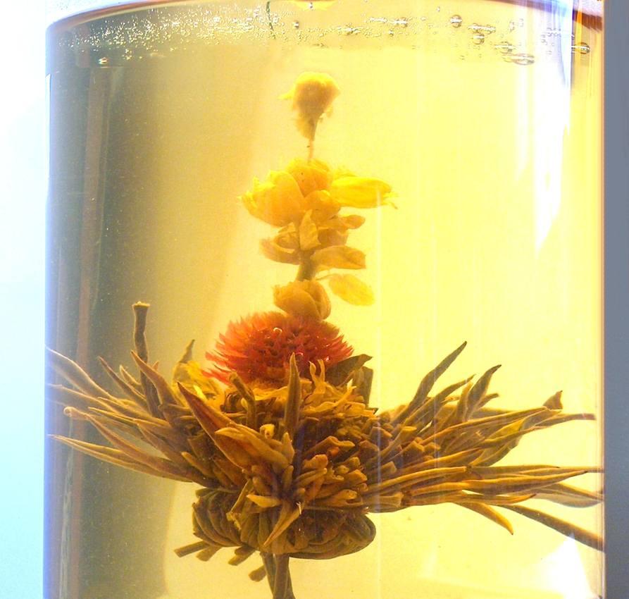 Tea Art - Kvetoucí čínský čaj - 'Červenobílý kvítek' 2 ks